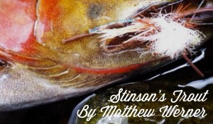 Stinson's Trout, by Matthew Werner