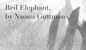 Red Elephant, by Naomi Guttman