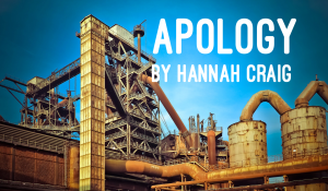 Apology, by Hannah Craig