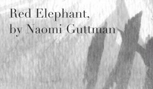 Red Elephant, by Naomi Guttman